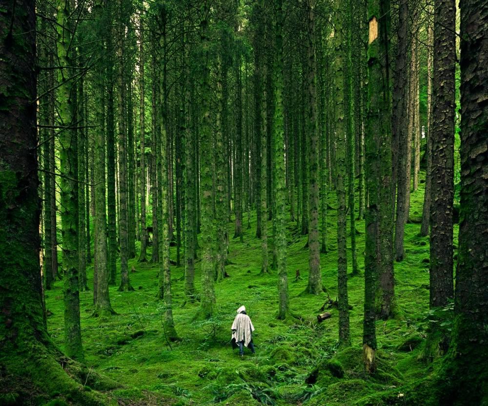 Doğa, Manzara HD Resim, Arka Plan Resimler 5