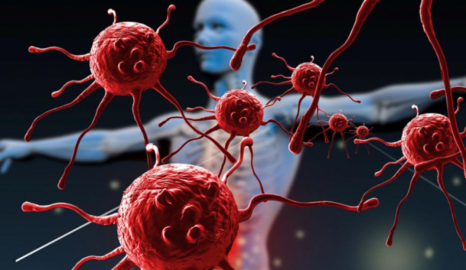 Bağışıklık Sistemi Nedir? Güçlenmesi İçin Ne Yapılmalı?