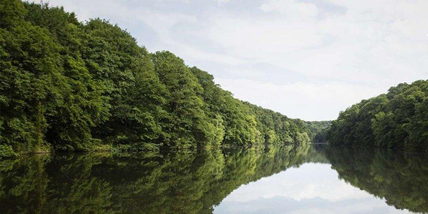 İstanbul'a Su Sağlayan Barajların Doluluk Oranı Yüzde 45'i Geçti
