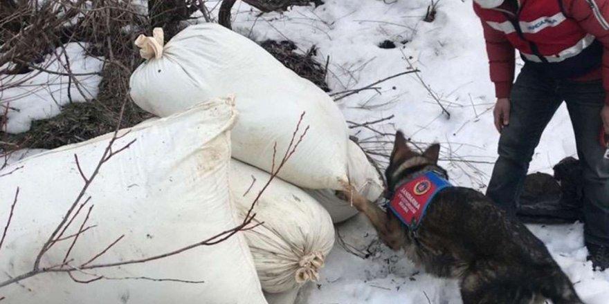 Bingöl Kırsalında 218 Kilogram Toz Esrar Ele Geçirildi