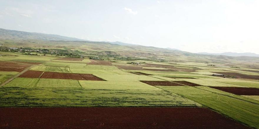 Elazığ'ın İlçelerinde Arazi Toplulaştırma Çalışmaları Devam Ediyor