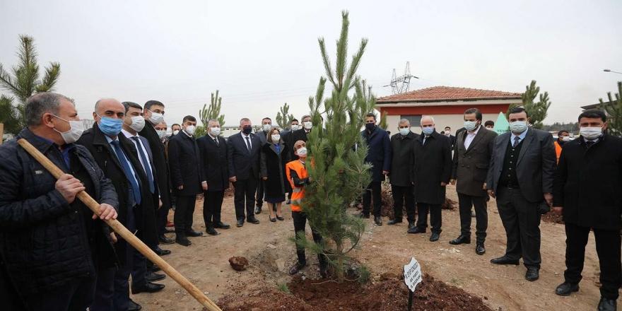 Gaziantep'in Orman Varlığının Artırılması Hedefleniyor