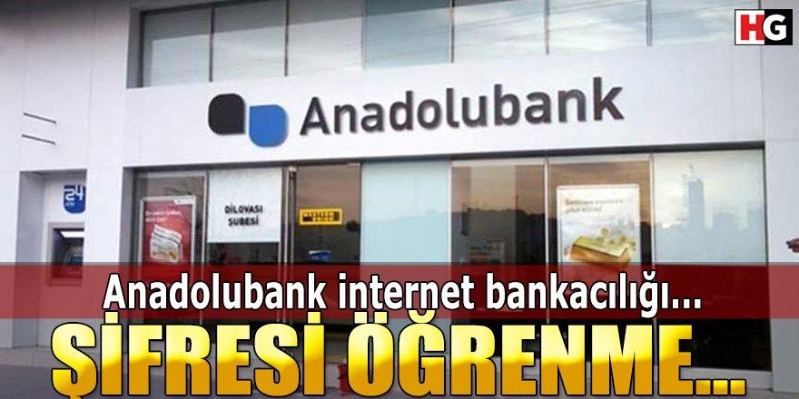 Anadolubank İnternet Bankacılığı Şifresi Öğrenme