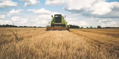 Organik Tarım Ürünleri İle Para Kazanma