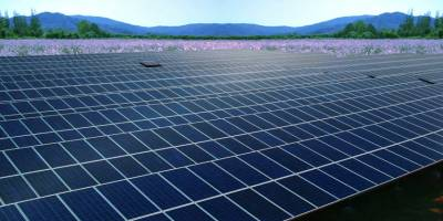 How much saving can provide Solar Energy Panels